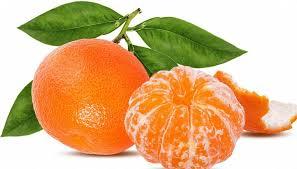 mandarino3